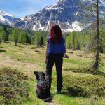 Escursioni con i cani